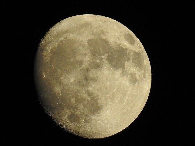 Getting closer to the November Beaver Moon or Hunter's Moon. It will be closer to Earth than usual. The Moon will be full on Saturday 1:23 A.M. EST. and may have an orange tent to it. Do you know why it's called a Beaver's Moon? I'll tell on Saturday. Moo