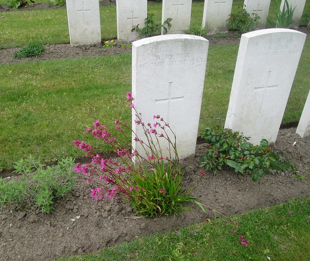 More Planting, Poelcapelle War Cemetery