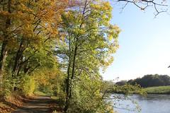 Kettwig (im Herbst)