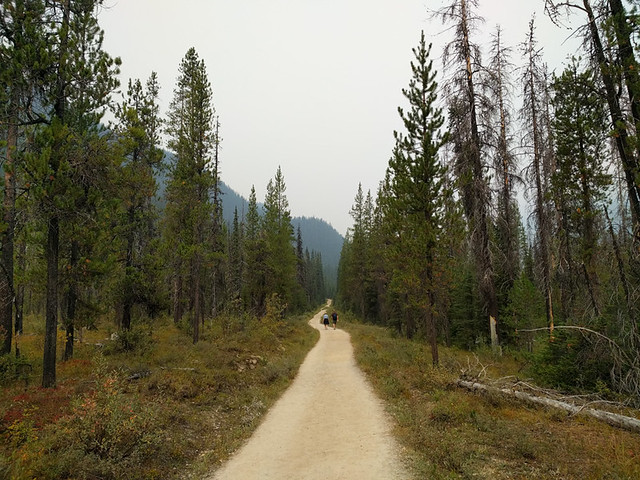 YoHo Valley Trail