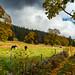 Switzerland's Wilderness ...