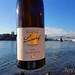 Generation Pfalz WtasO Wein trinken an schönen Orten mit Lucashof am Rheinstrand Mannheim duesiblog 3