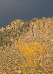Oaks in autumn color and granite cliffs