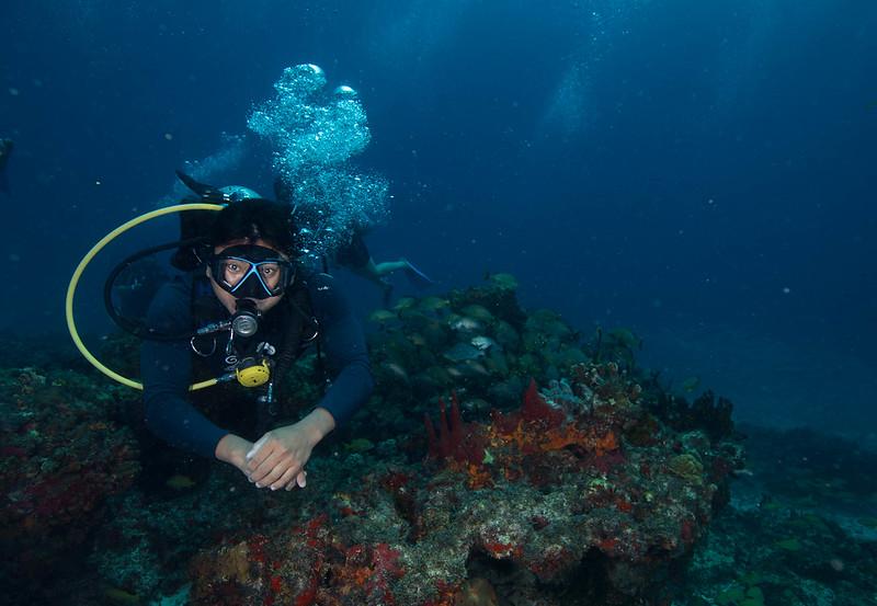 diving (46 de 77)