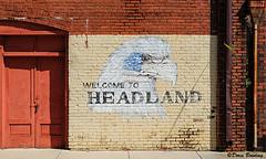 Headland, AL  2017