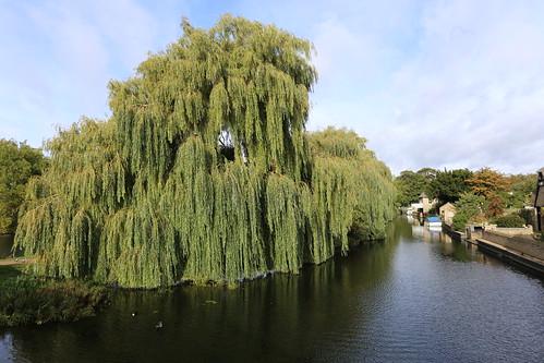 A walk round Godmanchester