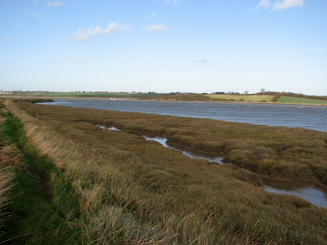 Marshes near Canewdon