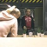2017:10:07 19:25:51 - Calif Ornia - Zufallsbild IKEA Kiel