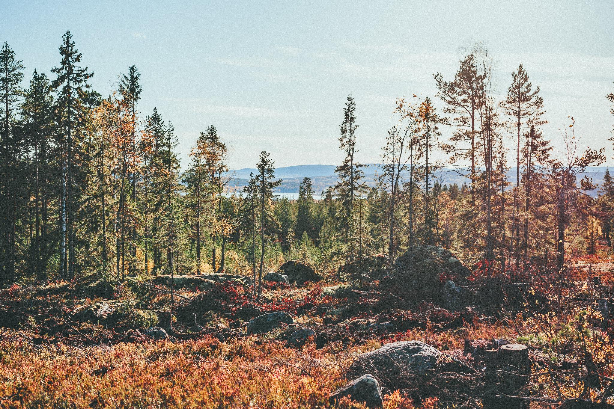 ranboberget - karinevelina.se
