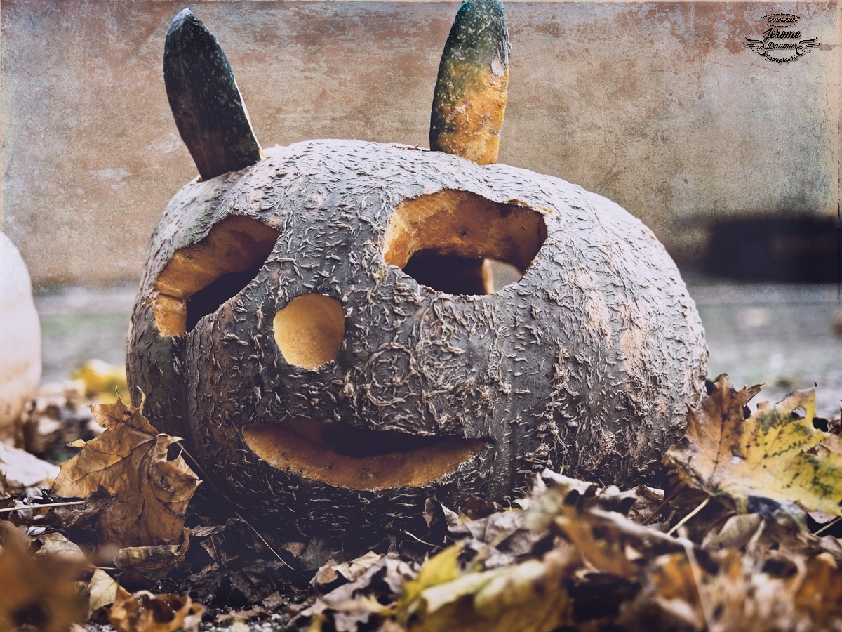 Pumpkin party 6