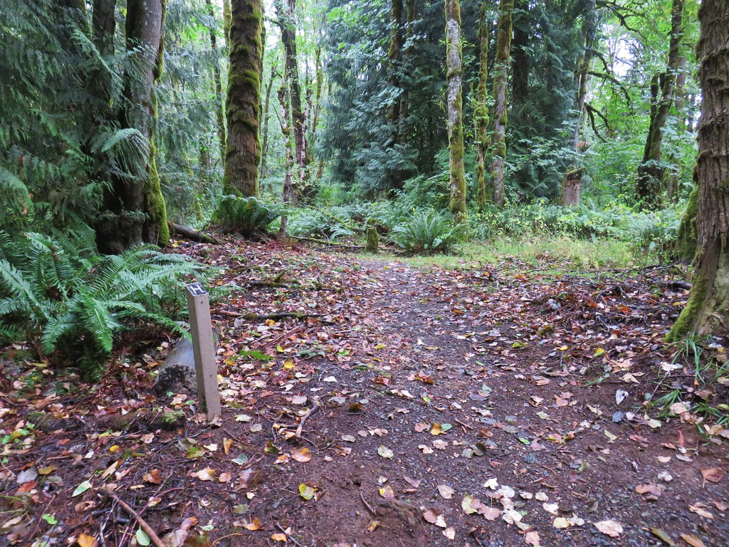 """Trail """"H"""" in Oxbow Park"""