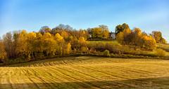 Farm in Levanger, Norway