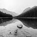 Calmness in black and white by derliebewolf