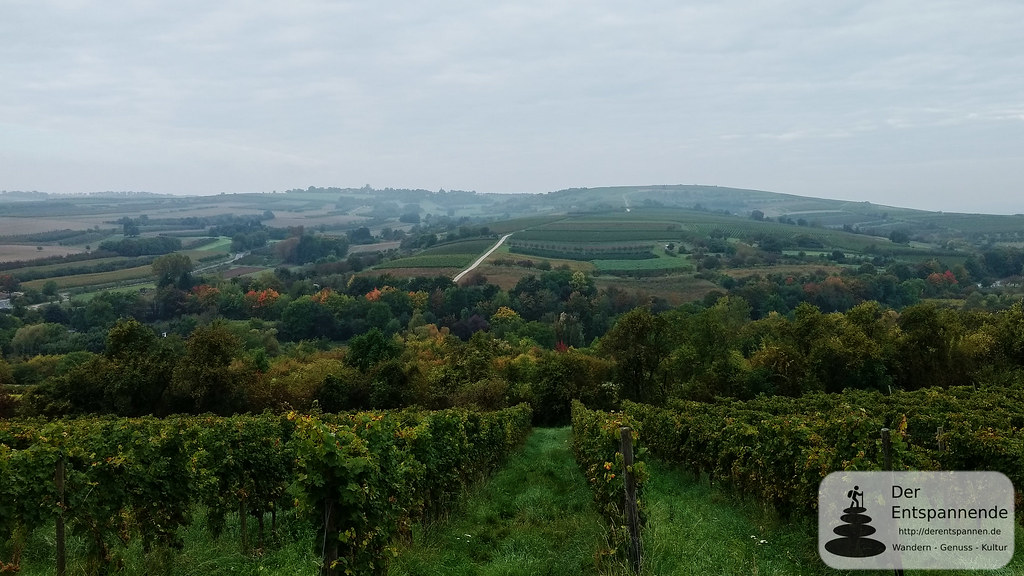 Blick ins Welzbachtal