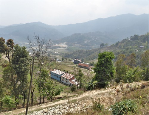 n-pokhara-Pagode-Paix-descente (6)