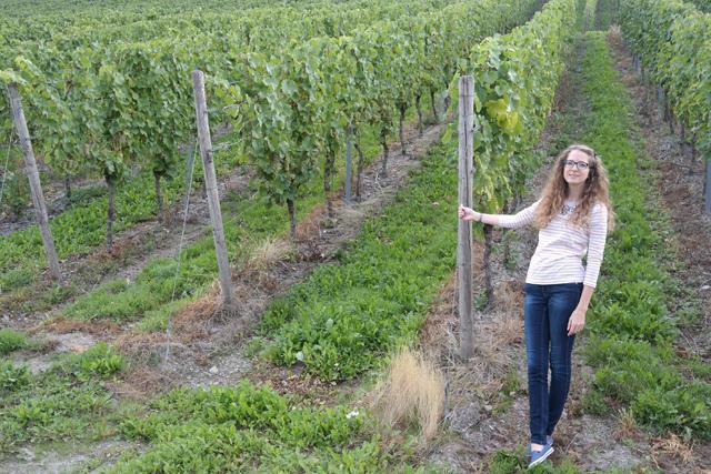 OOTD: wandeling in de wijngaarden