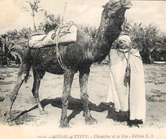 Camel Owner With His Camel