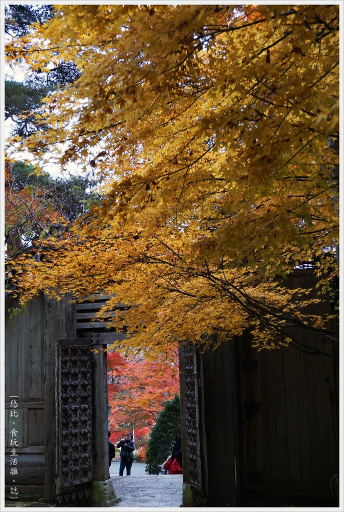 紅葉迴廊-久保田一竹美術館-17