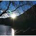 瀘沽湖   Lugu Lake
