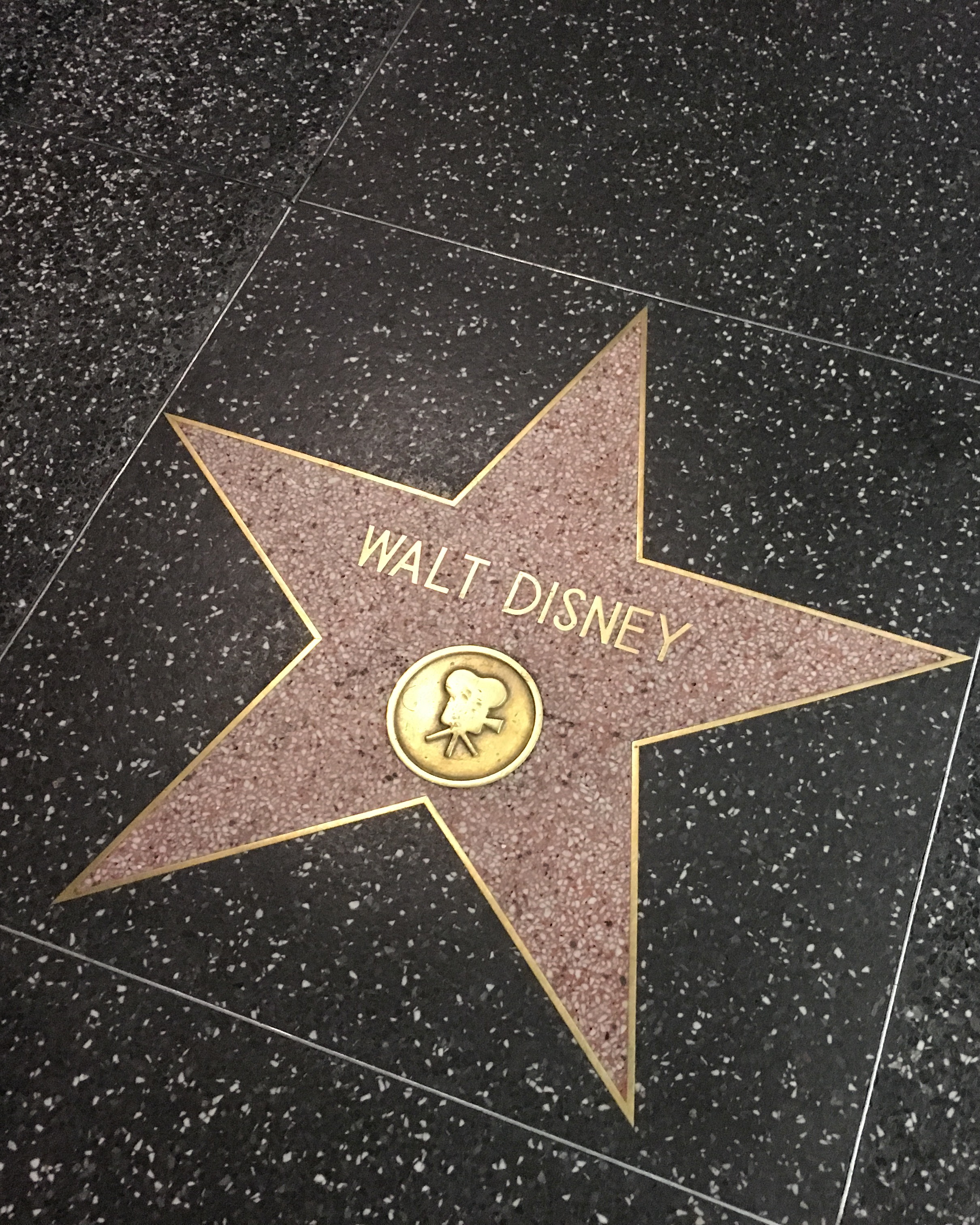 Los Angeles - disney star