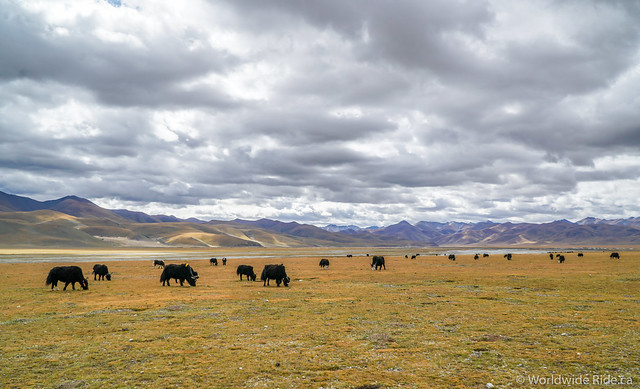 Road to Lhasa-61