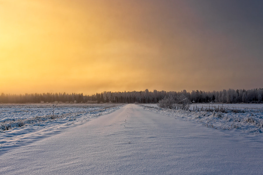 Snowy Road In The Winter Sunrise