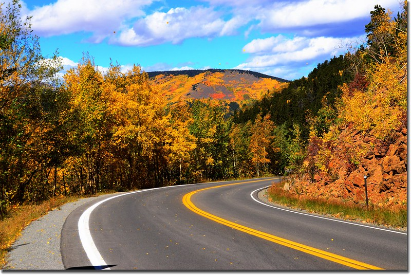 Fall colors, Mount Evans Scenic Byway, Colorado (48)