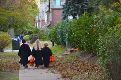Trick-Or-Treating On Ascan Avenue