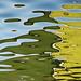 Water reflecions -  Abstract 860 - 2 by Toronjos