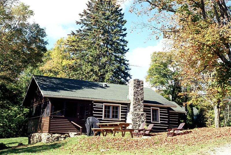 Billie Bear Log Cabin