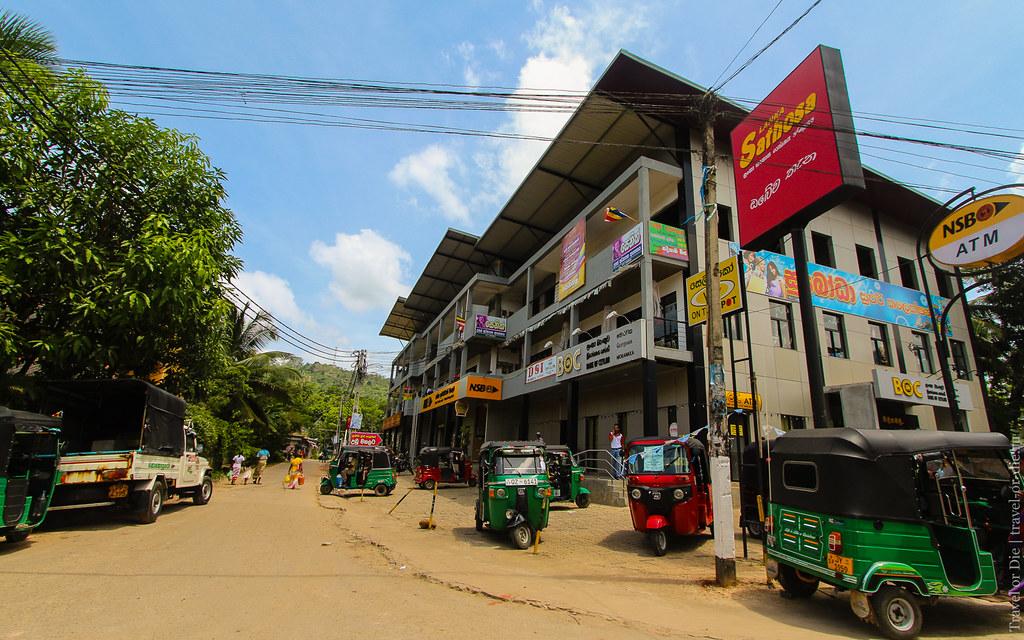 23.06-Sinharaja-Sri-Lanka-canon-1500px-012