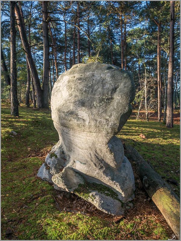 Les rochers de Nemours 37256912980_43bb06ea12_c