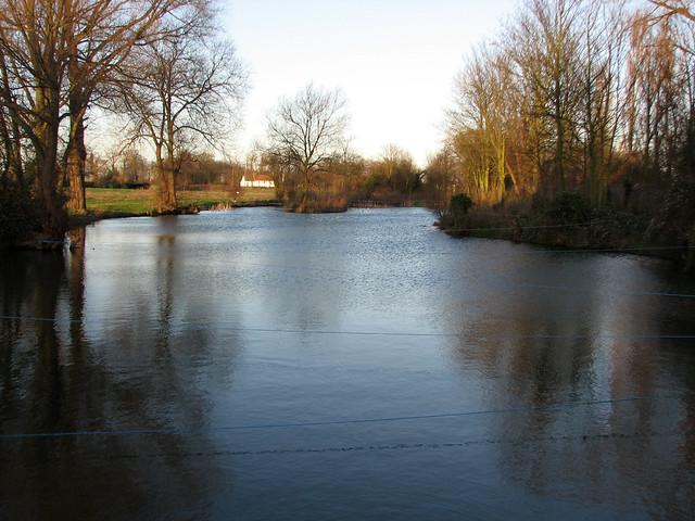 Fishing pond in Rochford