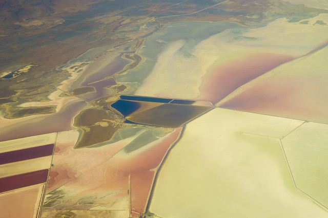 Colorful Brine Fields