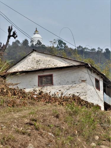 n-pokhara-Pagode-Paix-descente (2)
