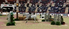 The final 25 riders have completed the ride-off of the Pennsylvania National Horse Show on Oct. 15, 2017...