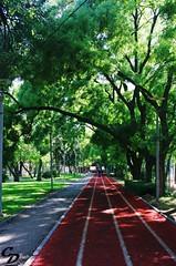 Kurtuluş Parkı/Liberation Park