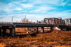 Sir Isaac Brock Bridge