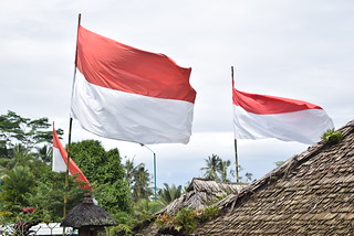 Indonesia Flag