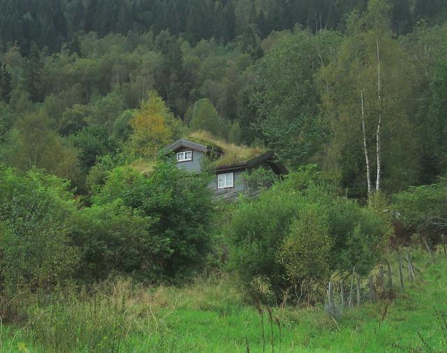 a Turf House