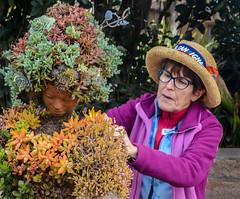 Botanical Seamstress