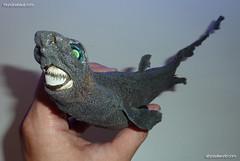 Dalatias licha. Kitefin shark. Taxidermia. Taxidermy.