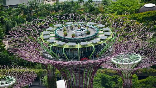 Singapore: Garden City