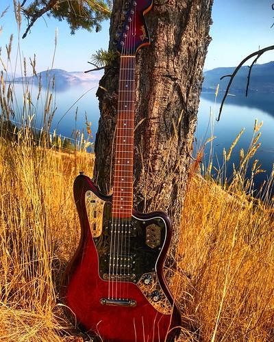 okanaganvalley okanagan fenderguitars fenderguitar fenderjaguar guitarphotography musicphotography electricguitar guitar fender kelowna
