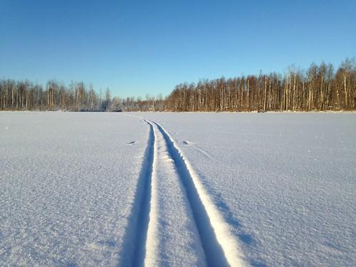 Лыжня и нервы!