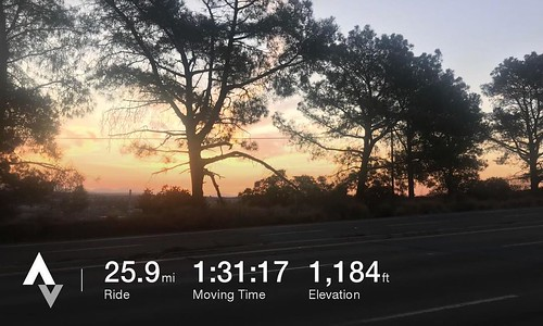 Found the sun while climbing Torrey Pines during today's edition of Dawn Patrol 🚴