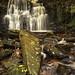 Tiger's Clough Waterfall (Rivington)
