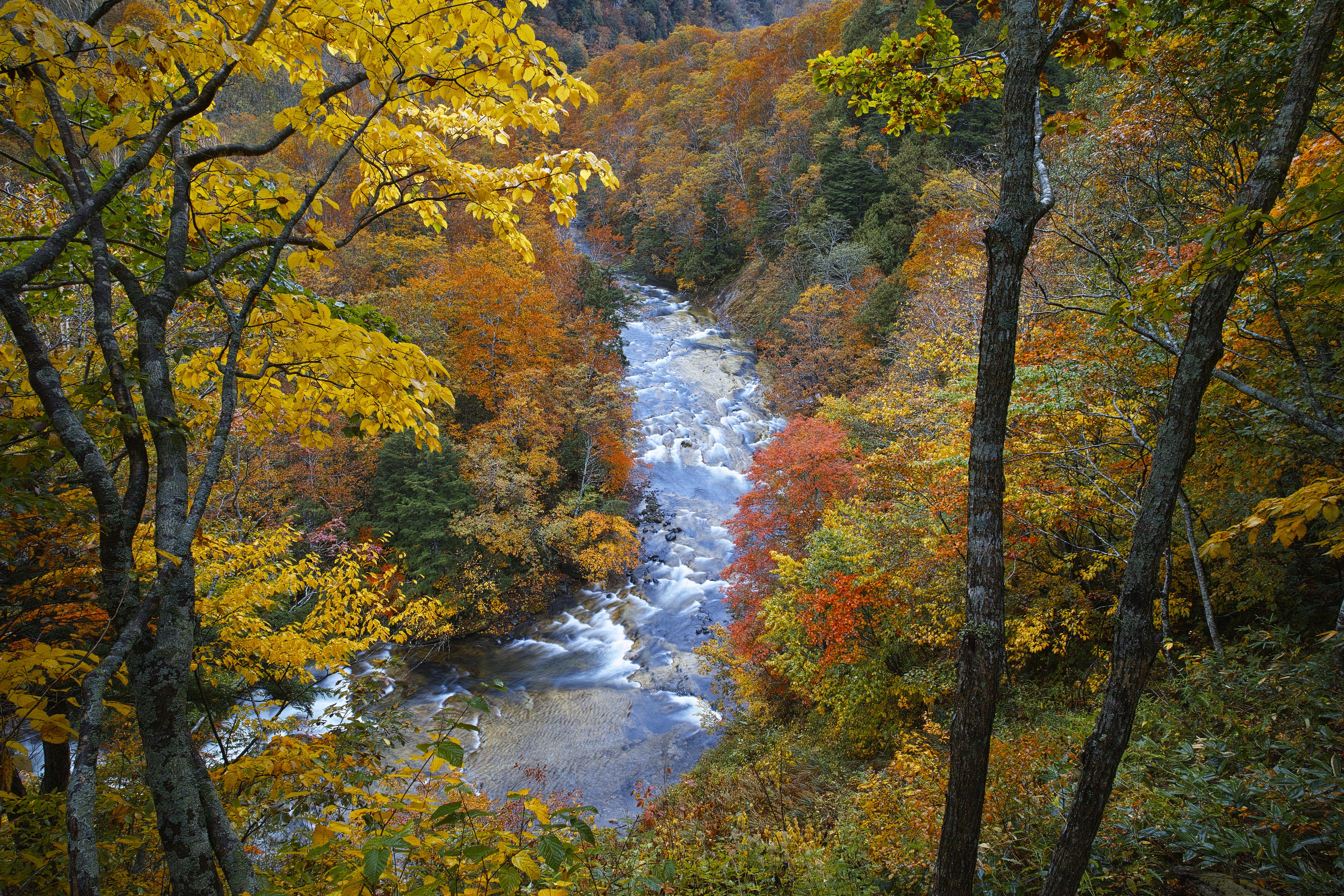 秋の奥志賀渓谷(Okushiga Valley