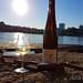 Generation Pfalz WtasO Wein trinken an schönen Orten mit Lucashof am Rheinstrand Mannheim duesiblog 5