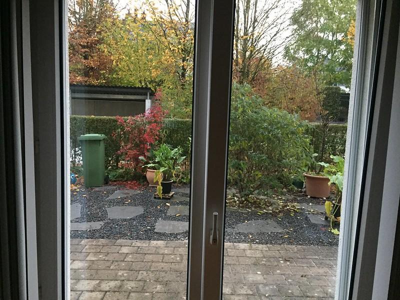 Front garden, no scaffolding